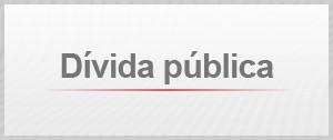Selo Dívida Pública (Foto: Editoria de Arte/G1)