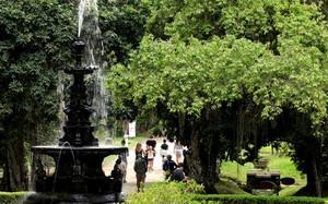 Fernando Gabeira mostra o Jardim Botânico do Rio