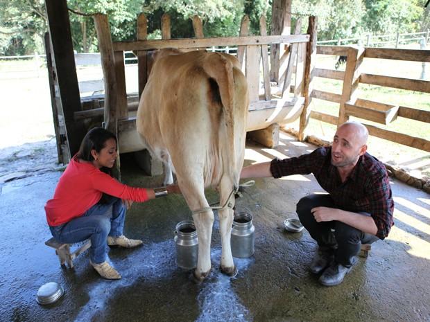 Aventuras no curral! Paulo Gustavo e Samantha tirando leite de vaca (Foto: TV Globo/Estrelas)