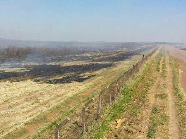 Área atrás do aeroporto ficou destruída pelo fogo (Foto: Alexandre Cabral/ TV Morena)
