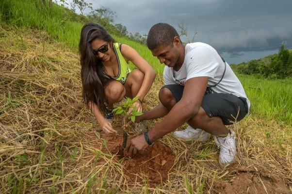 Plantio de mudas de reflorestamento da mata atlântica (Foto: Marcos Amend/Divulgação)