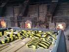 Uma tonelada de maconha apreendida é incinerada em SC