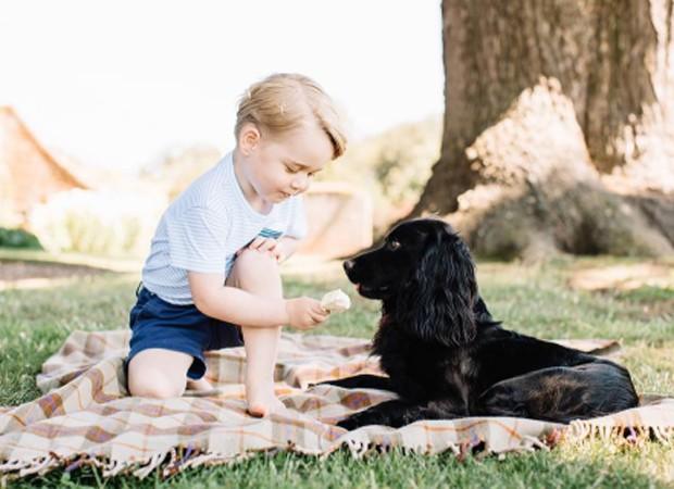 Príncipe George se diverte com pet da família (Foto: Reprodução/Facebook)