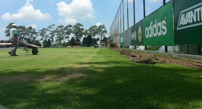 Academia de Futebol Palmeiras (Foto: Marcelo Hazan)