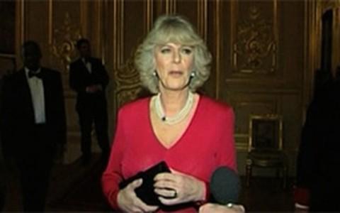 Conheça Camilla, a madrasta do príncipe William