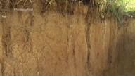 Parte 2: Estudo de solos é realizado para melhorar o plantio no estado