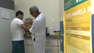 Saúde: 53 postos de Salvador aplicam vacina que protege contra a febre amarela