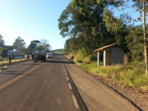Mulher morre atropelada na BR-282 (Foto: PRF/Divulgação)