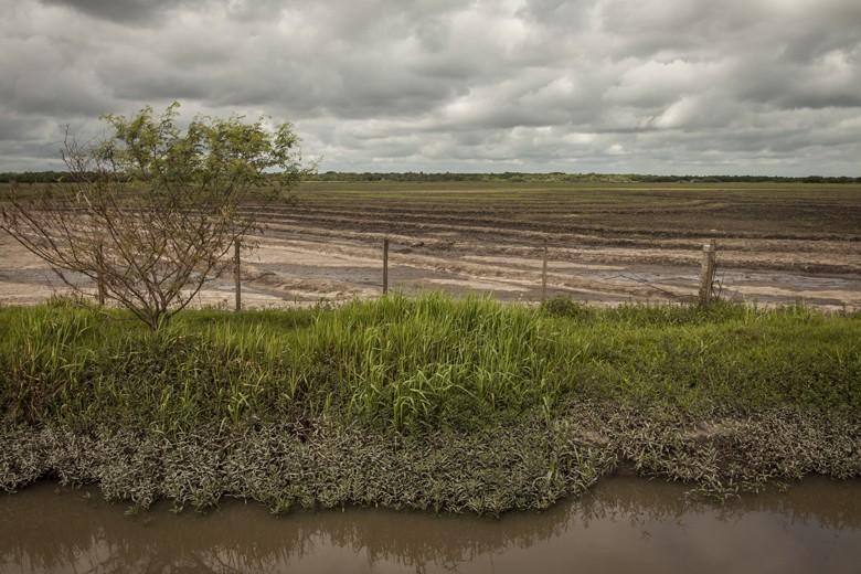 Rodolfo Bartz teve grande parte de suas lavouras de arroz e soja completamente submersas por mais de uma semana (Foto: Marcelo Curia)