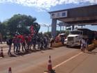 Movimentos sociais ligados ao campo realizam 9 protestos no Paraná