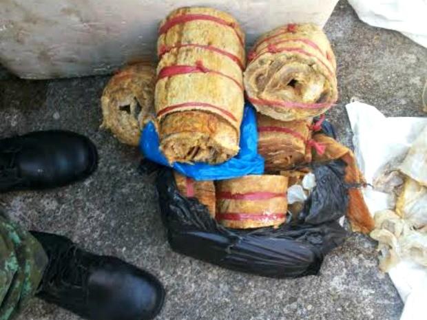 Foram apreendidos aproximadamente 68.30kg de pirarucu (Foto: Batalhão Ambiental/Divulgação)
