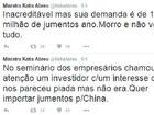 Chineses querem importar jumentos do Brasil, diz ministra