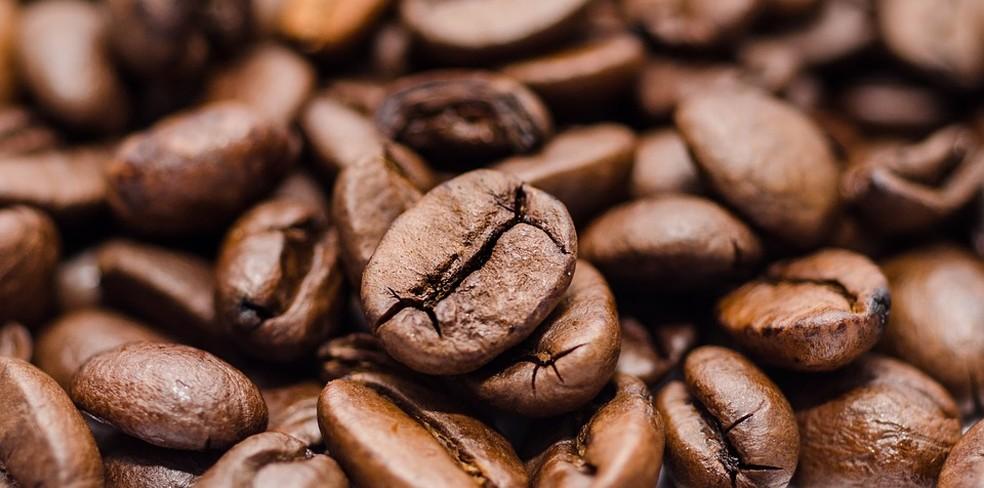 Seminário fala sobre o Café Fair Trade, no Sebrae, em Varginha (Foto: Divulgação)