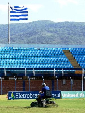 Avaí faz tratamento do gramado da Ressacada (Foto: Alceu Atherino, Divulgação / Avaí FC)