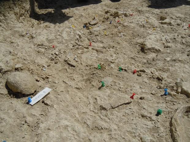 Local onde fóssil foi encontrado, na Garganta de Olduvai, na Tanzânia  (Foto: M. Domínguez-Rodrigo)