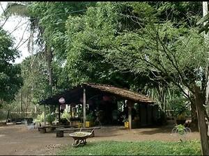 Espaço disponibiliza livros e café feito no fogão à lenha para moradores de Gurupi (Foto: Reprodução/TV Anhanguera)