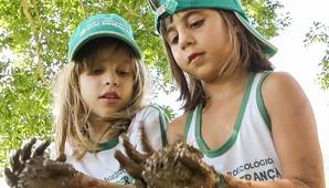Iniciativa promove a conscientização ambiental, social e pessoal de crianças, adolescentes e jovens com agroecologia (Divulgação)