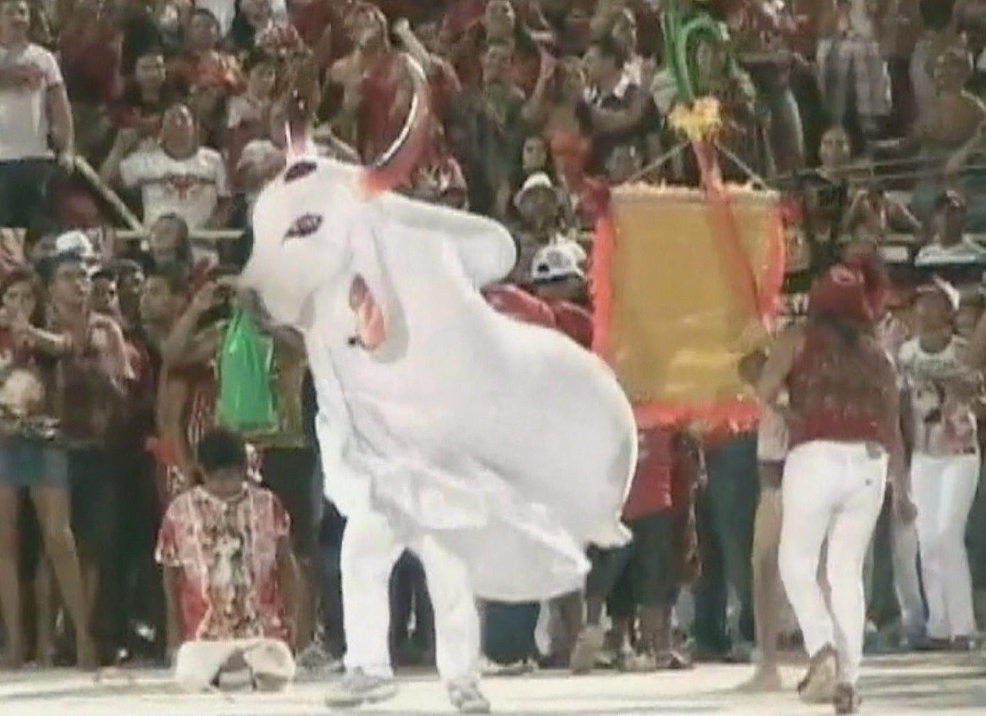 O boi garantido encantou a galera vermelha e branca (Foto: Jornal do Amazonas)