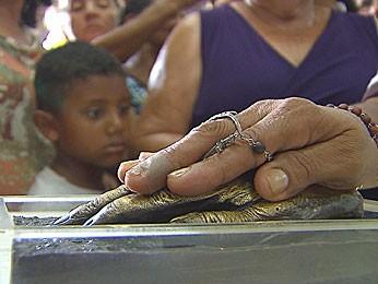 Réplica da mão de frei Damião (Foto: Reprodução / TV Globo)