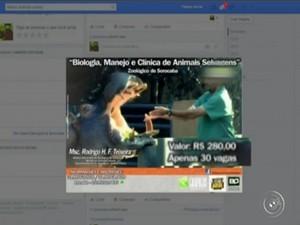 Redes sociais mostram o veterinário do Zoológico anunciando o curso (Foto: Reprodução TV TEM)