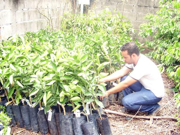 Mundas foram doadas a produtores rurais de agricultura familiar em Córrego Fundo (Foto: Prefeitura de Córrego Fundo)