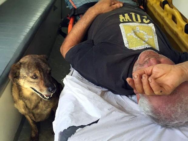 Cachorro permaneceu ao lado de dono em ambulância em Poços de Caldas (Foto: Anderson Salatiel/Arquivo pessoal)