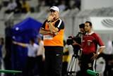 Fernandes elogia Elano e promete força máxima na estreia do Brasileirão