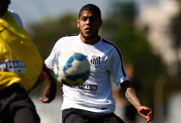 Leandro Santos (Foto: Ricardo Saibun/Santos FC)