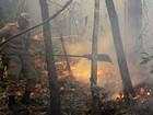 Exército deve auxiliar Bombeiros contra incêndio em parque de MT