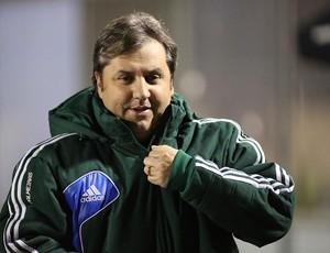 Gilson Kleina Palmeiras x Atlético-PR (Foto: Giulianos Gomes / Ag. Estado)
