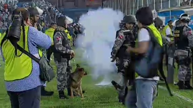 Paysandu x Avaí, bomba na Curuzu (Foto: Reprodução / SporTV)