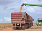 Queda na estimativa da produção agrícola pesa na inflação de alimentos