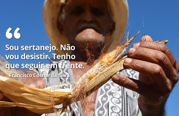 No Sítio Arrojado, zona rural de Frutuoso Gomes,  o agricultor Francisco Cosme da Silva, de 67 anos, luta diariamente para tentar tirar da terra o sustento da família. Com a seca prolongada, a plantação de milho mais uma vez foi perdida   (Foto: Anderson Barbosa e Fred Carvalho/G1)