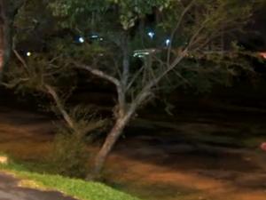 Crime ocorreu em área próxima ao Gasômetro, em Porto Alegre (Foto: Reprodução/RBS TV)
