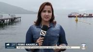 Angra tem 14ª morte por febre amarela
