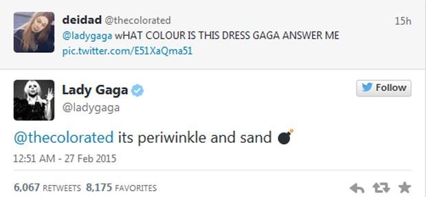 Lady Gaga: 'É azul-lavanda e cor de areia' (Foto: Reprodução / Twitter)