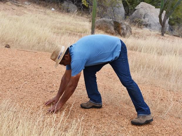 No Sítio Trangola, em Currais Novos, a água das chuvas escorria sobre o solo desprotegido, sem vegetação, e levava embora todo o material orgânico (Foto: Anderson Barbosa e Fred Carvalho/G1)