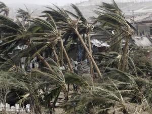 Árvores entortadas pelo vento na vila indiana de Arjipalli (Foto: Biswaranjan Rout/AP)