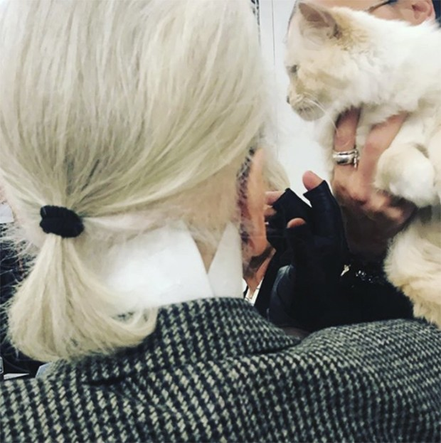 Karl's turning his back on me in favour of Choupette - and who can blame him (Foto: @suzymenkesvogue)