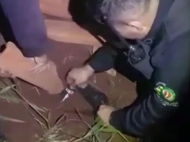 Dinheiro encontrado estava enterrado no quintal de uma casa em Goiânia (Foto: Reprodução/TV Anhanguera)