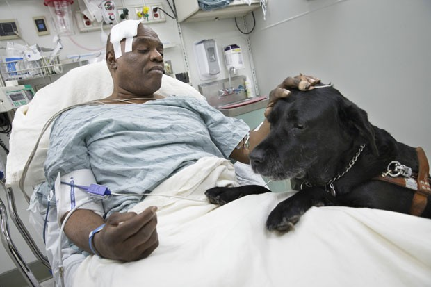 Cecil Williams com seu cão-guia, Orlando, na cama do hospital (Foto: John Minchillo/ AP)