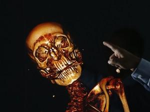 Esqueleto é analisado em imagens em 3D (Foto: Reuters/Bazuki Muhammad)