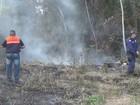 Municípios do AM registram quase 600 focos de incêndio em janeiro