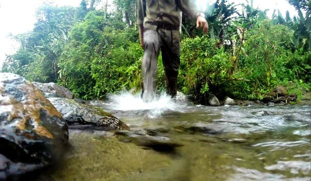 Globo Repórter viaja pela beleza dos bosques da Cordilheira dos Andes (TV Globo)