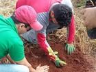 Projeto visa recompor partes de mata ciliar do São Lourenço em Ituiutaba