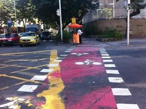 Ciclovia aparece na Rua Real Grandeza. (Foto: Mariucha Machado/G1)