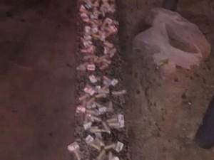 Material foi apreendido em Cabo Frio (Foto: Divulgação Polícia Militar)