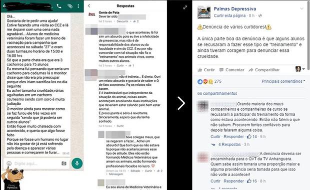 Estudantes denunciaram maus-tratos a cães durante treinamento no CCZ de Palmas (Foto: Reprodução/Facebook)
