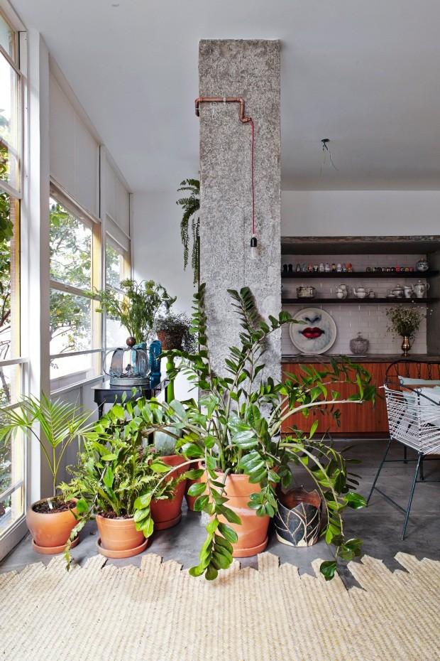 Com folhas tão brilhantes que parecem até enceradas, a zamioculca chama atenção nesta sala de estar projetada pelo designer Marcelo Rosenbaum e pelo arquiteto Flavio Miranda (Foto: Victor Affaro / Editora Globo)