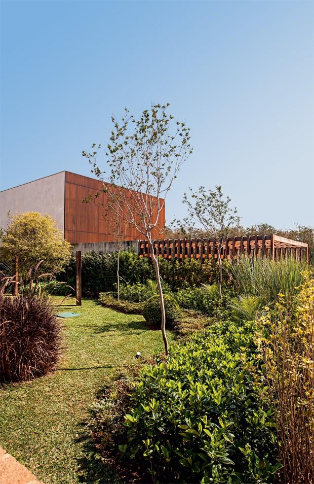 cerca-viva-tumbergia-gardenia (Foto: Gui Morelli/Divulgação)